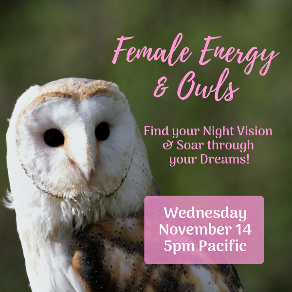 Female Energy & Owls
