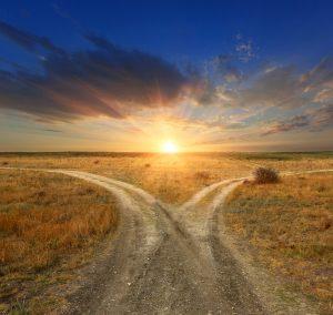 choose-a-path